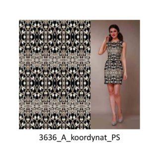 3636_A_koordynat_PS